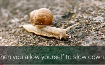 Slowing Down as a Spiritual Meditation (VIDEO)